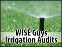 WISE Guys Irrigation Audits