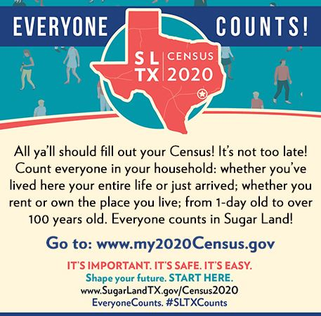 InfoGraph_Census2020_July