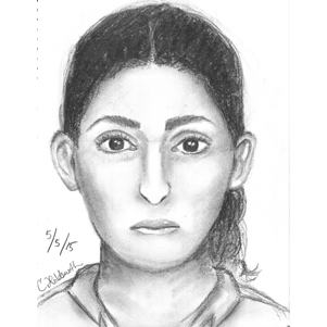 Police Release Composite Sketch from Carjacking