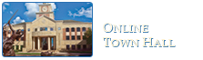 Online Town Hall