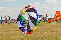 Kite Fest 1.jpg