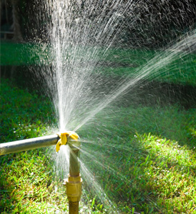 Free Irrigation System Evaluation